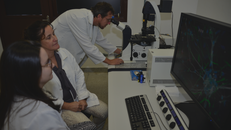 "Ceme-Sul (""Electronic Microscopy Center"") begins to operate."